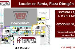 Locales Plaza Obregon